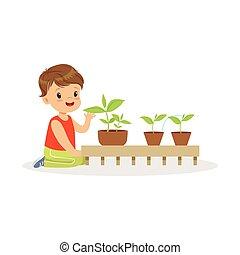 rośliny, sprytny, mały chłopieją, o, ilustracja, przedszkole...
