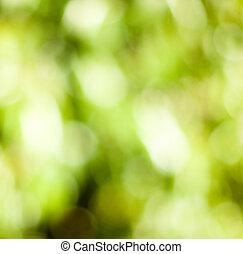 rośliny, tło