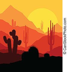 rośliny, wektor, zachód słońca, tło, kaktus, pustynia