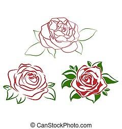 ro, blomma, röd