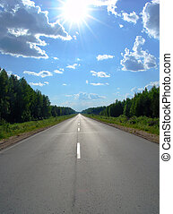 Road 1 - A road continuing to infinity in a forest land and ...