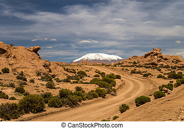 Road across Bolivian Altiplano. Snow capped peak in the background