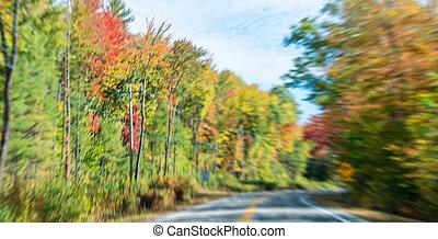 Road across foliage, New England