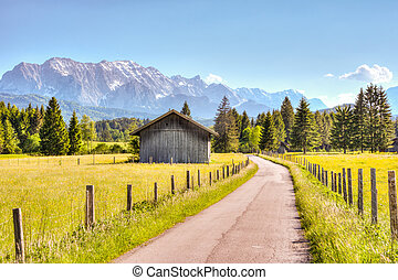 Road and a barn in the Bavarian alps