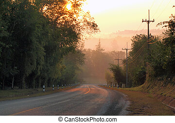 Road and fog and the silhouette of trees