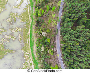 road and pond in forest. aerial view landscape, Romania