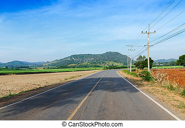 Road and Sugarcane field agriculture tropical farm landscape