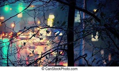 Road And Tree On Rainy Evening