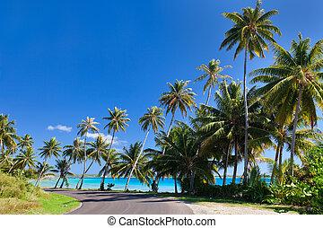 Road at Bora Bora - Road along the coast of Bota Bora island...