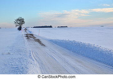 Road at field in winter