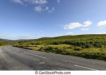 road bends in the moor, Dartmoor