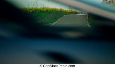 Road Between Rapeseed Fields - Road between rapeseed fields....