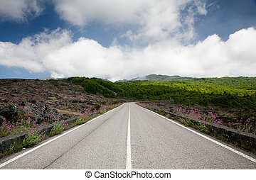 Road blue sky with clouds and green landscape
