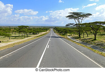 Road close up. Around the landscape of nature, whimsical trees. Africa, Ethiopia.