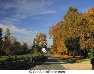 Road, countryside, autumn