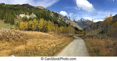 road crossing autumnal landscape in mountain in panoramic view
