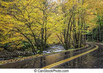 Road Curves Through Smoky Mountain Autumn Color