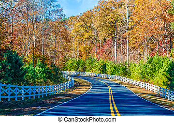 Road Curving Through Autumn Trees and White Fence