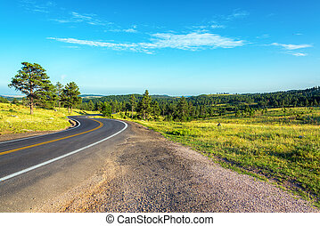 Road Curving through the Black Hills