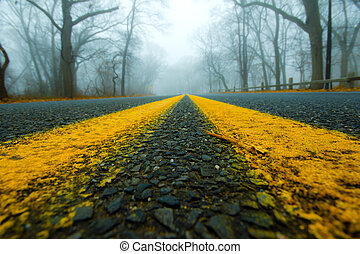 Road Foggy Morning