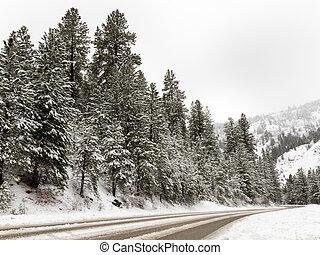 Road going through the mountains
