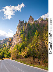 Road in a mountain landscape through the Vratna valley at the national park Mala Fatra, Slovakia, Europe.