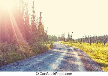 Road in Alaska - Scenic highway in Alaska, USA