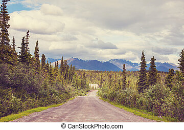 Road in Alaska - Scenic highway in Alaska, USA