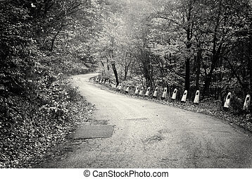 Road in autumn wood.