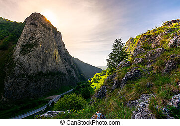road in Canyon of Trascau mountains in the morning. lovely...