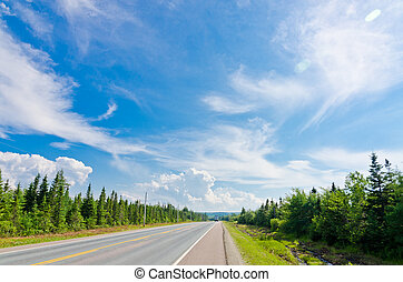 Road in Cape of Breton Highlands national park