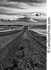 Road in endless Patagonia plains