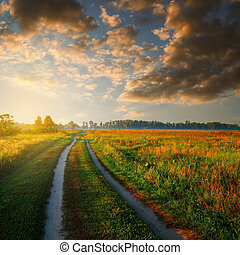 road in field and cloudy sky