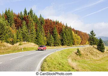 road in Nizke Tatry (Low Tatras), Slovakia