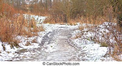 Road in park at winter. - Road in park at winter at cloud...