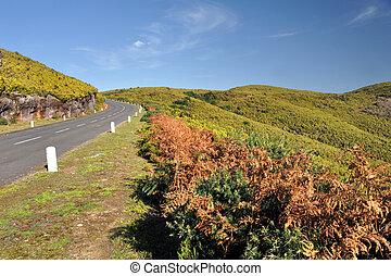 Road in Plateau of Parque natural de Madeira, Madeira island, Portugal