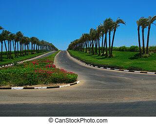 Road in Sharm el-Sheikh, Egypt