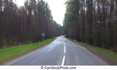 road in spring forest, sun