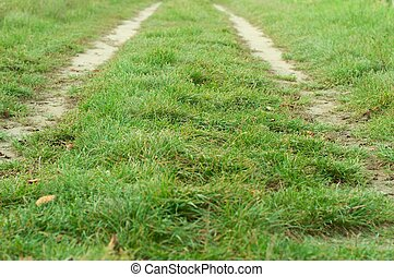 Road in the field with green grass