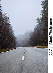 Road in the fog