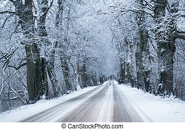road in the forest in winter, snow-covered highway