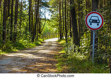 road in the forest with a road sign