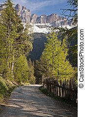 Road in the Italian Alps