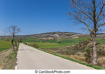 Road in the landscape of Castilla y Leon
