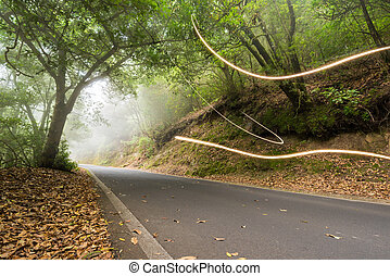 Road in the magic forest, light trails through the myst, ...