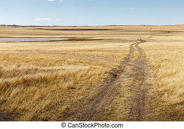 road in the Mongolian steppe, Gobi Desert