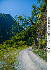 road in the mountains on a clear summer day
