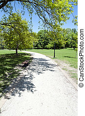 road in the park by summer