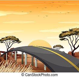 Road in the savanna field