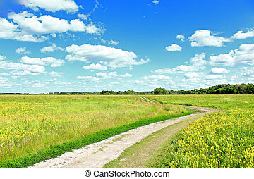 road in the summer field with white clouds